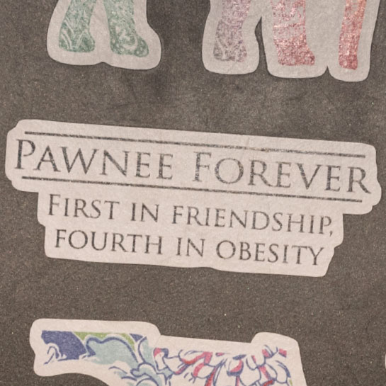 Pawnee Forever sticker