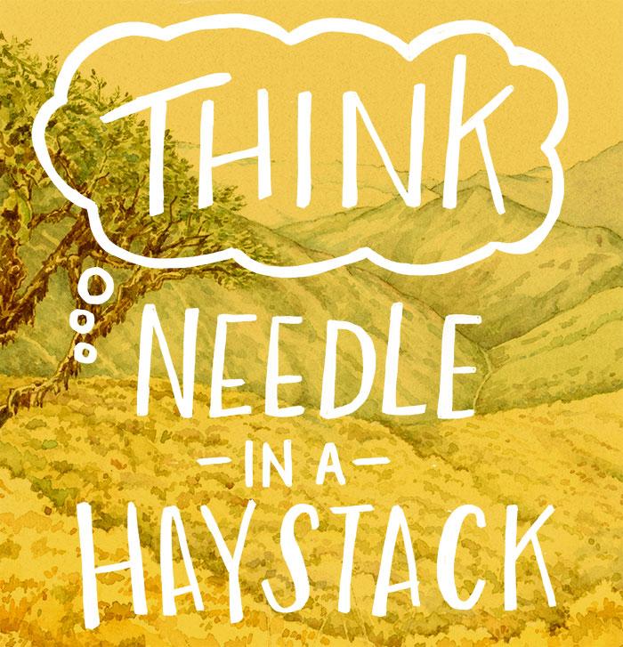 Think needle in a haystack.