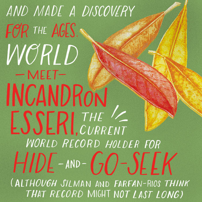 And made a discovery for the ages.? ?World, meet?Incandron esseri,?the current world record holder for hide-and-go-seek.?