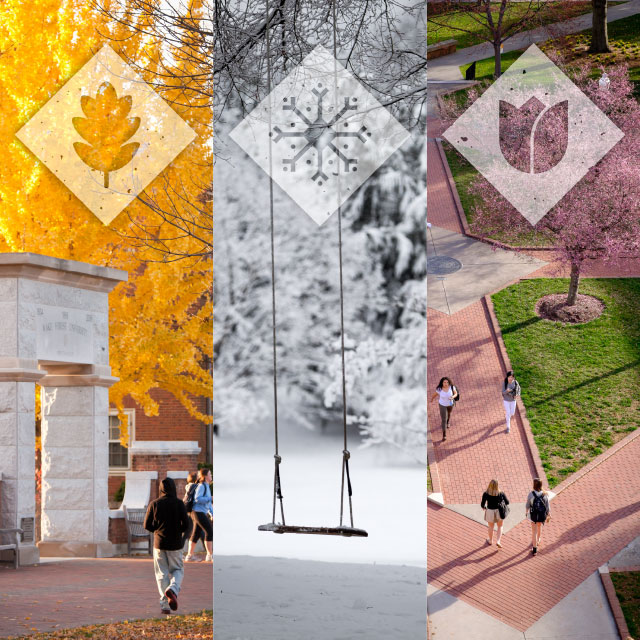 Seasons at Wake