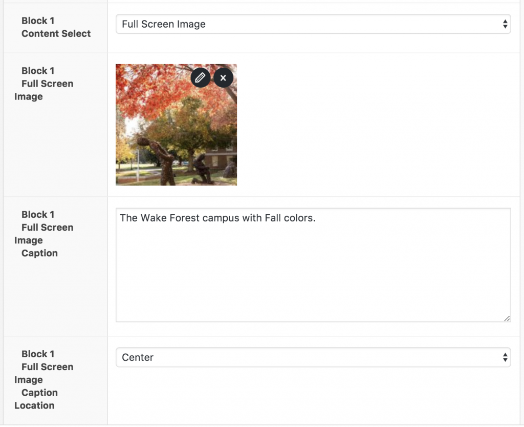 Full width image interface
