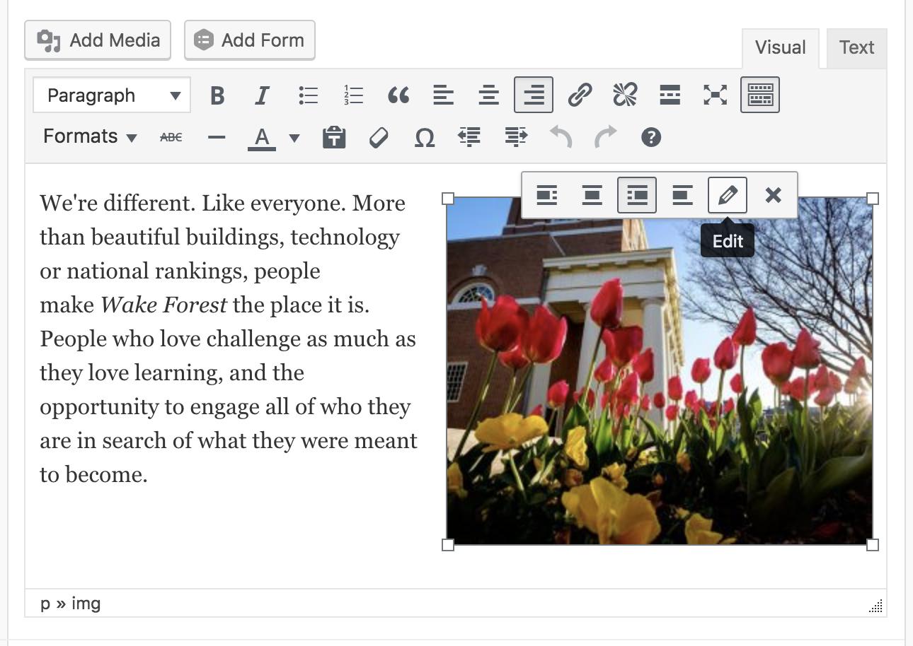 Edit image inline