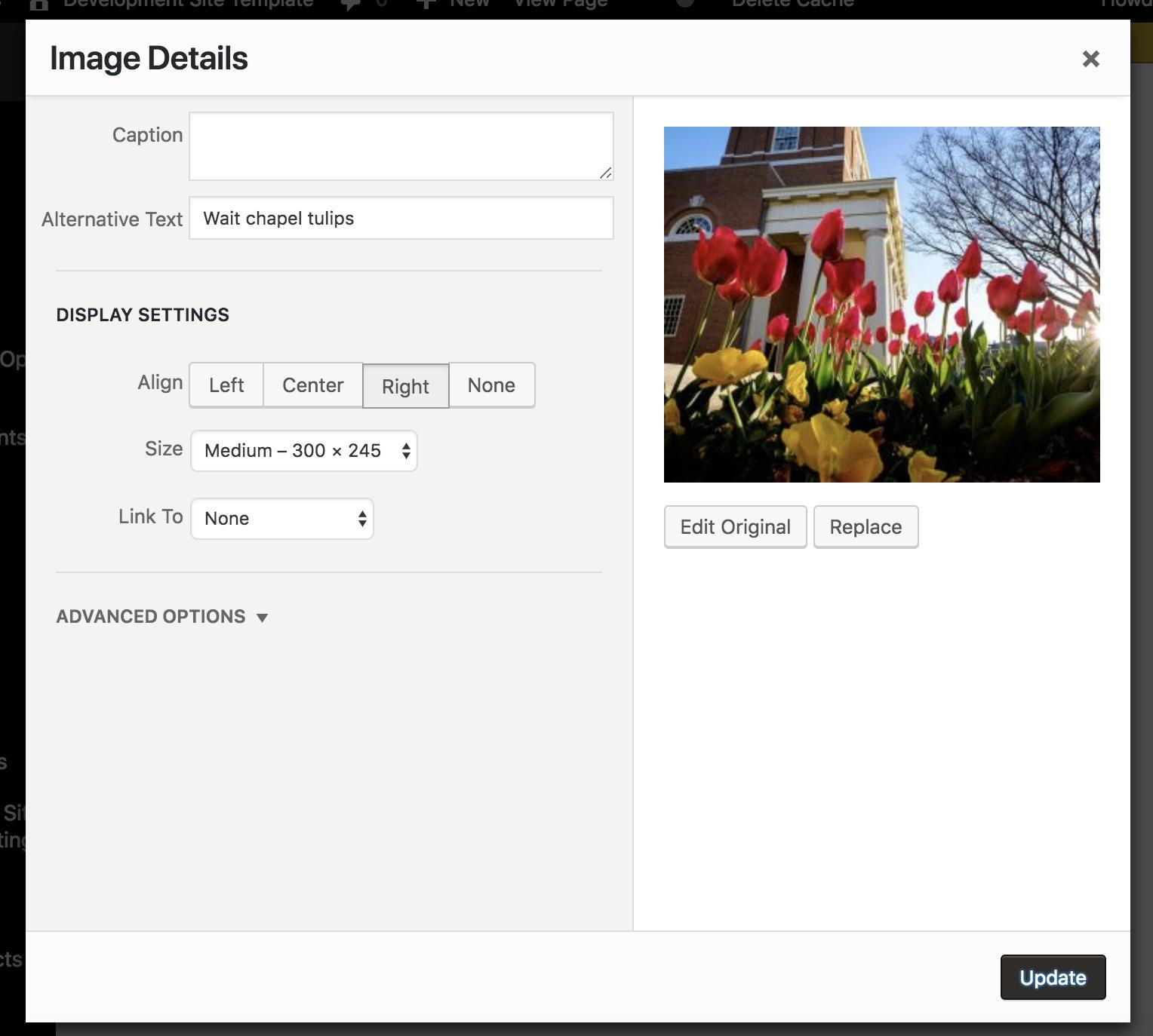 Edit image details inline