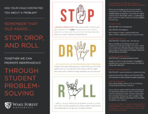 Stop, Drop, and Roll problem solving method