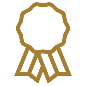 Wake Forest gold award icon
