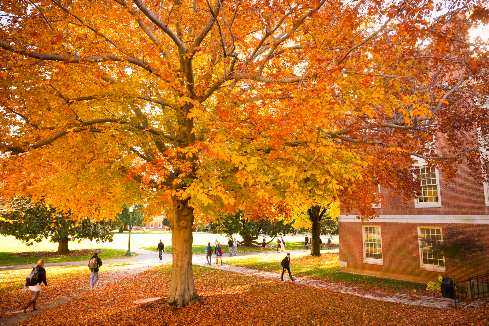 Parents & Families | Preview of the Fall Foliage