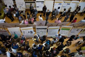 Wake Forest students present the results of their research projects at Undergraduate Research Day.