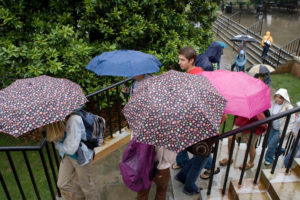 Wake Forest students walk to class in the rain on Wednesday, September 13, 2006.