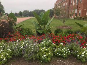 Farrell Hall flowerbeds