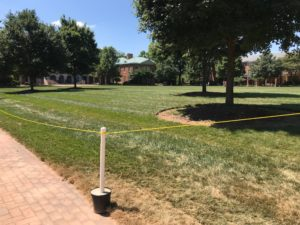 ropes around the quad to protect the sod