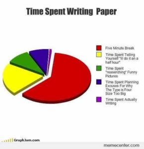 joke - pie chart about paper writing