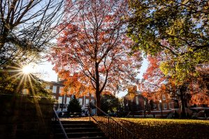 The afternoon sun makes the fall colors glow as students walk across Tribble Courtyard on the campus of Wake Forest University, Wednesday, November 13, 2019.