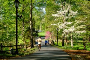 Members of the Wake Forest community enjoy a cool spring morning on the walkway to Reynolda Village, on the campus of Wake Forest University, Monday, April 15, 2019.