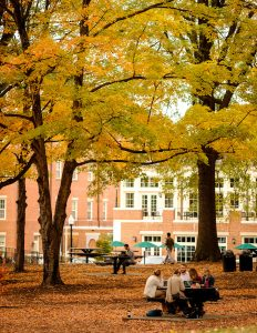 Wake Forest students enjoy a warm late fall day studying outside Farrell Hall on Monday, November 14, 2016.