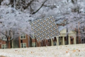 ice from a campus yard sign - photo by riley herriman '22