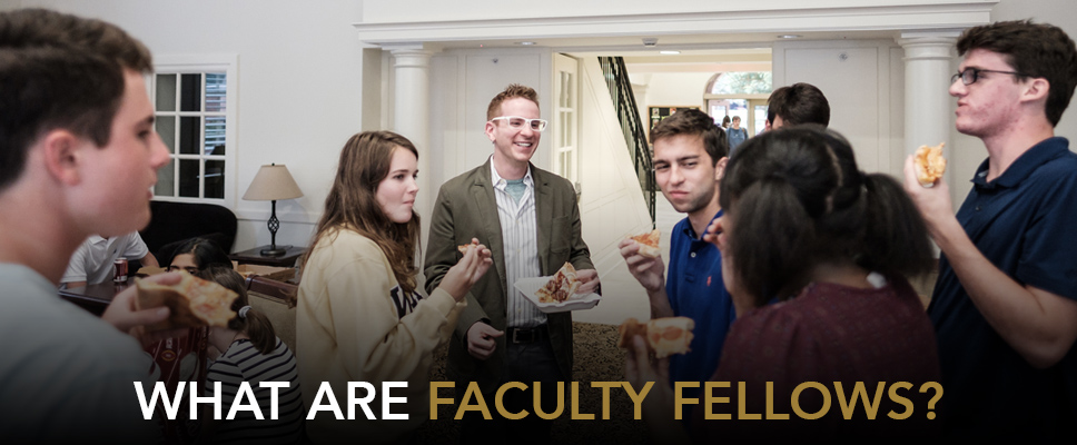 What are Faculty Fellows?