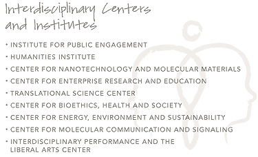 Indisciplinary Centers and Institutes