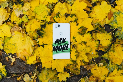 "Phone laying on top of yellow leaves with the words ""Ask More"" on the back of it."