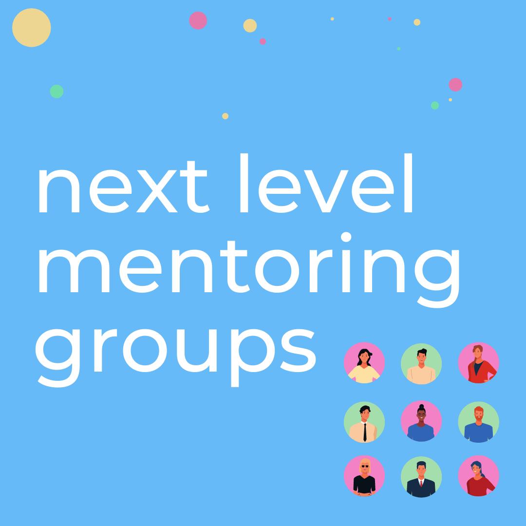 Next Level Mentoring Groups