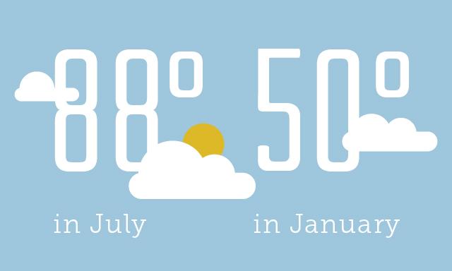 Average Weather