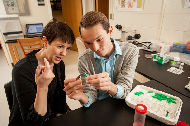 Biology Professor Susan Fahrbach, Neuroscience Lab in Winston Hall, David Hale ('15)