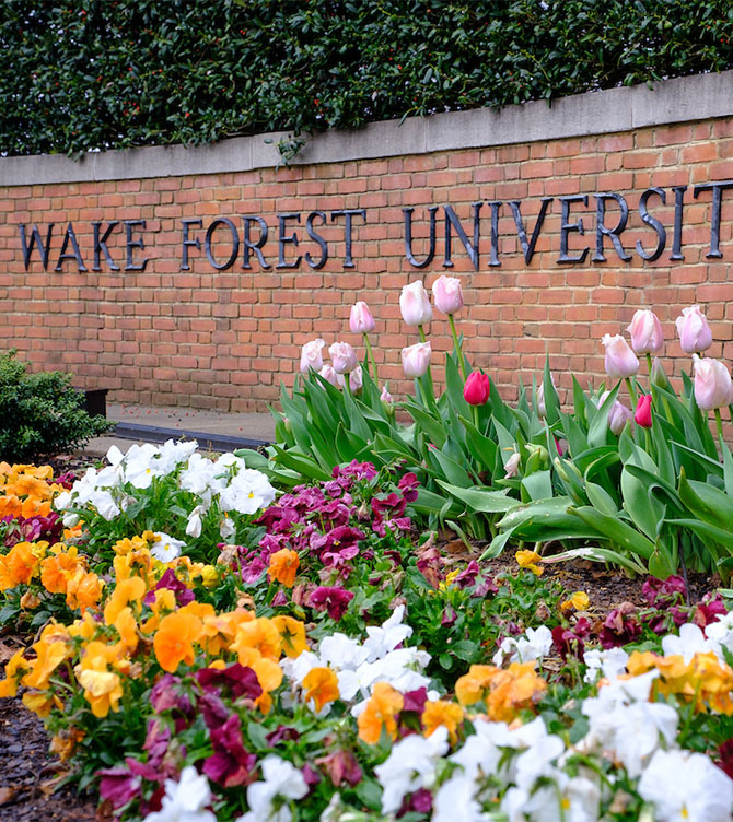 Tulips bloom in front of the entrance to Wake Forest University