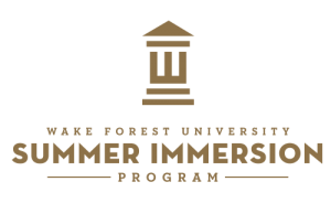 summer-immersion-logo
