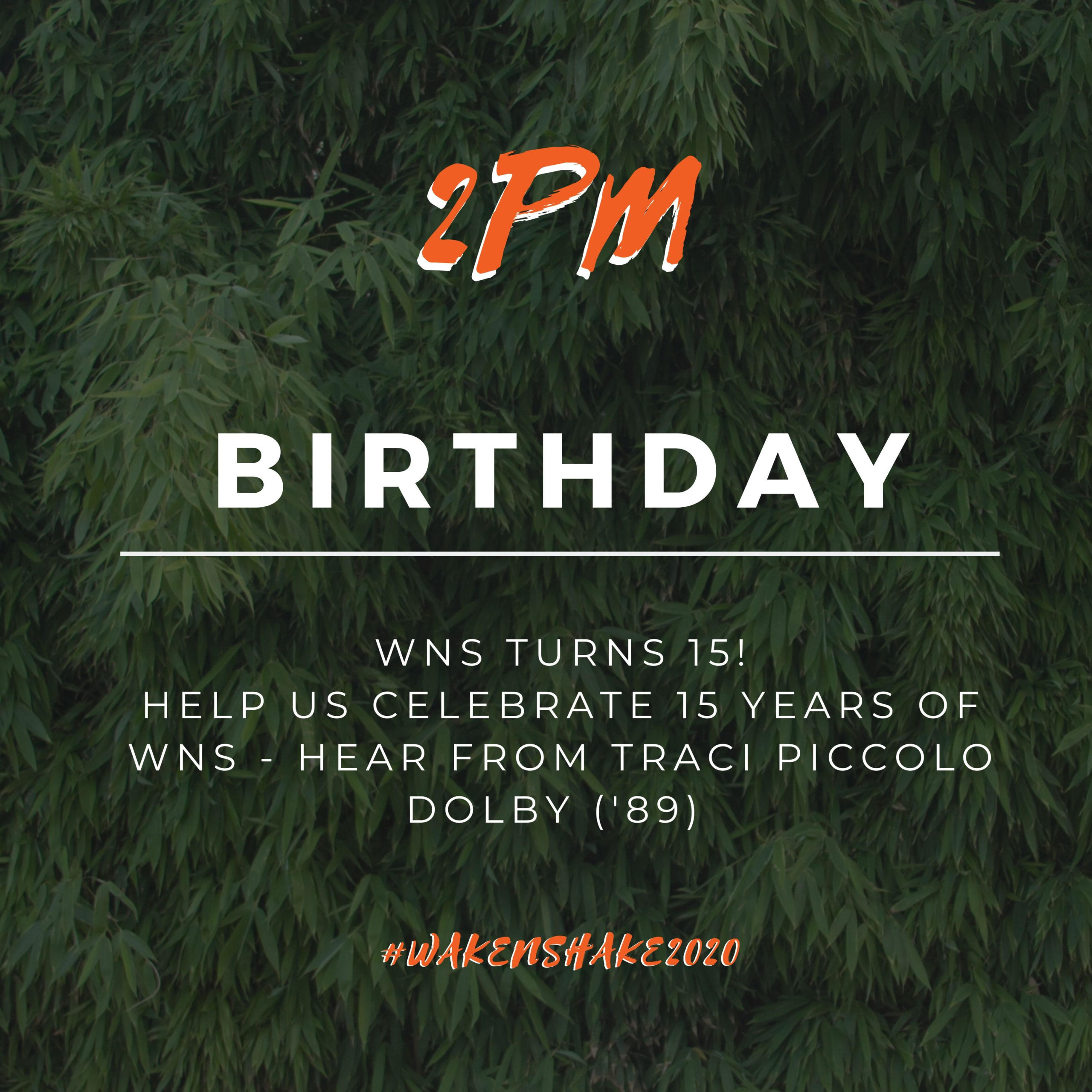 2 PM - Birthday