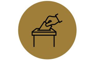Election Engagement - Virtual Summer