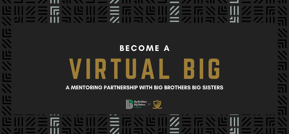 Virtual Big Brother/Sister - Web Page Header