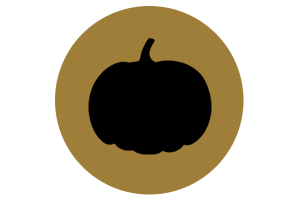 Project Pumpkin plain