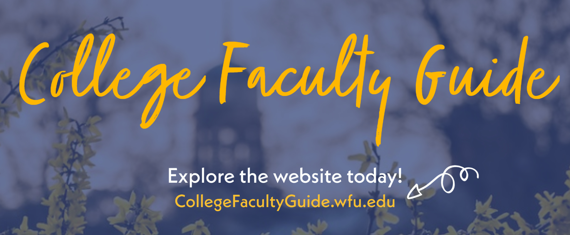 College Faculty Website link