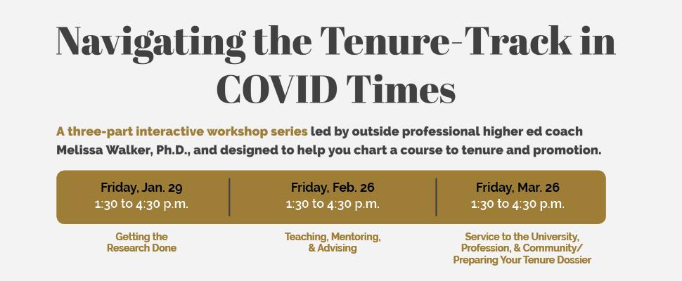 Navigating tenure track workshop series image