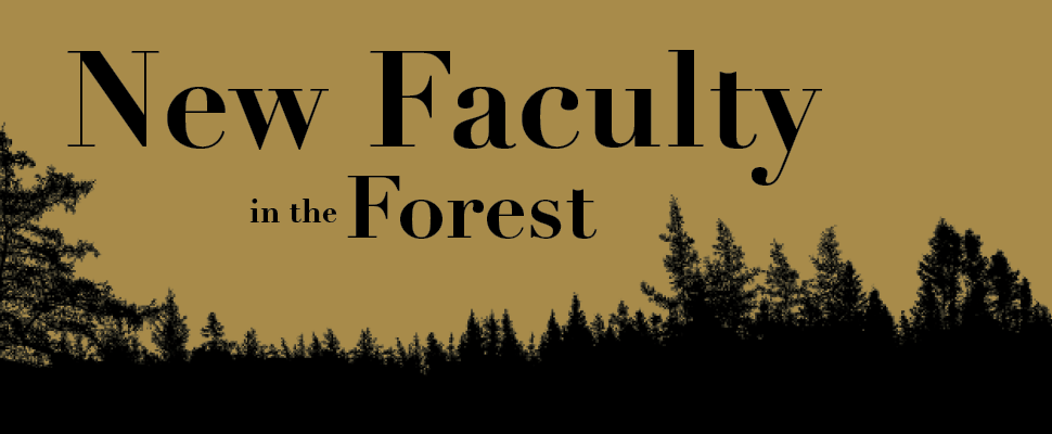 New Faculty in the Forest