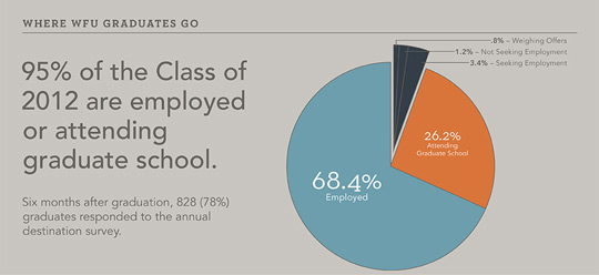 Graphic showing 95% of survey responders have jobs or are in grad school