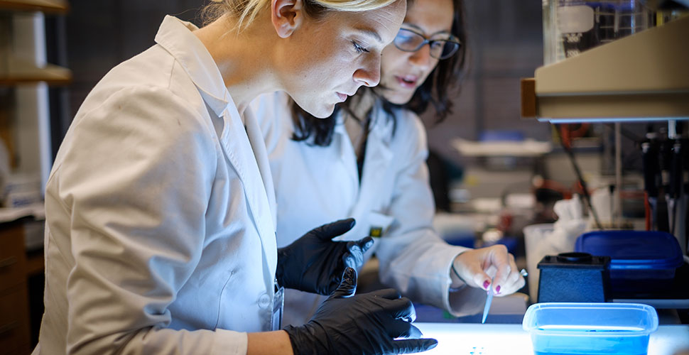 Dos Santos (right) works with Edwards in her lab at Wake Downtown.