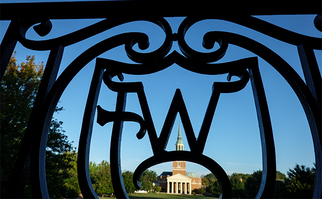 Wake Forest wrought iron