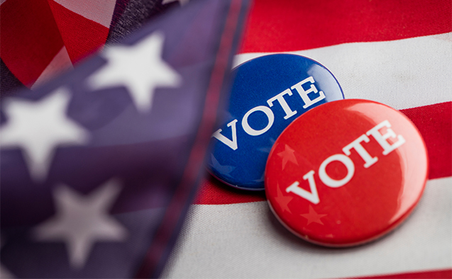 Generic election stock photo with vote buttons