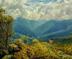 Andes mountains image