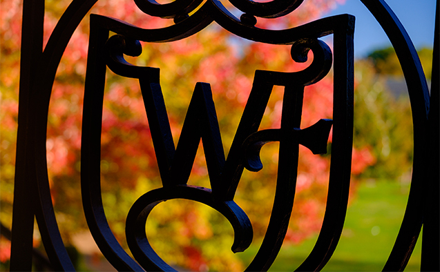 Wake Forest wrought iron logo with fall leaves