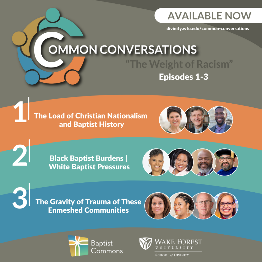 Common Conversations Series 1