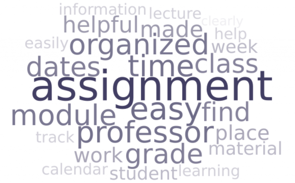 Word cloud with the words students mentioned most. The biggest word is assignment, followed by organized, professor, easy, find, schedule, and grade