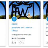 Screenshot of template options in Canvas Commons