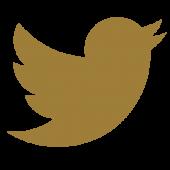social_twitter
