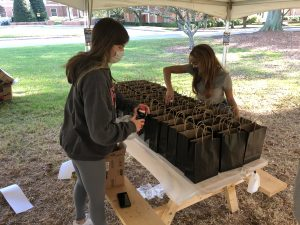 Wake Academy student volunteers pack STEM activity kits for local students