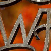 wfu ironwork