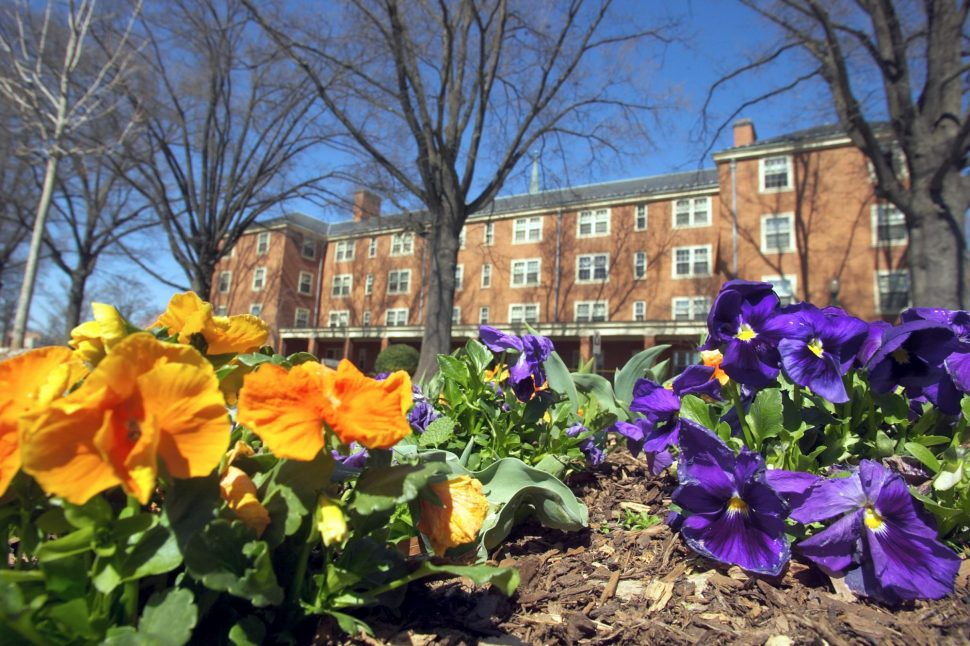 Side view of Davis Residence Hall with blooming flowers