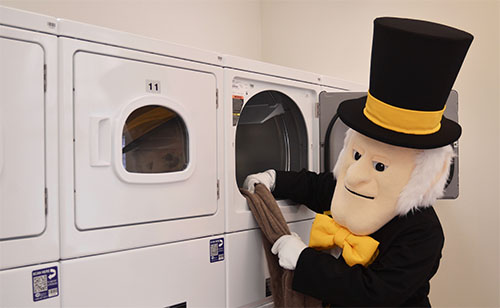 Demon Deacon In the Laundry Room