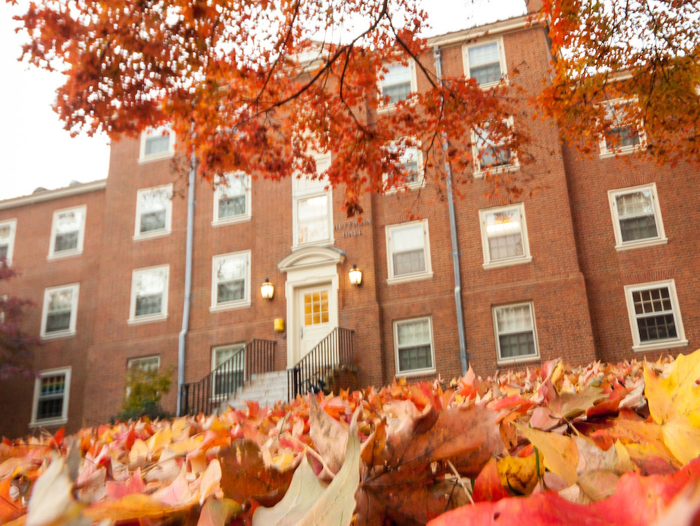 Autumn leaves outside of Huffman residence hall