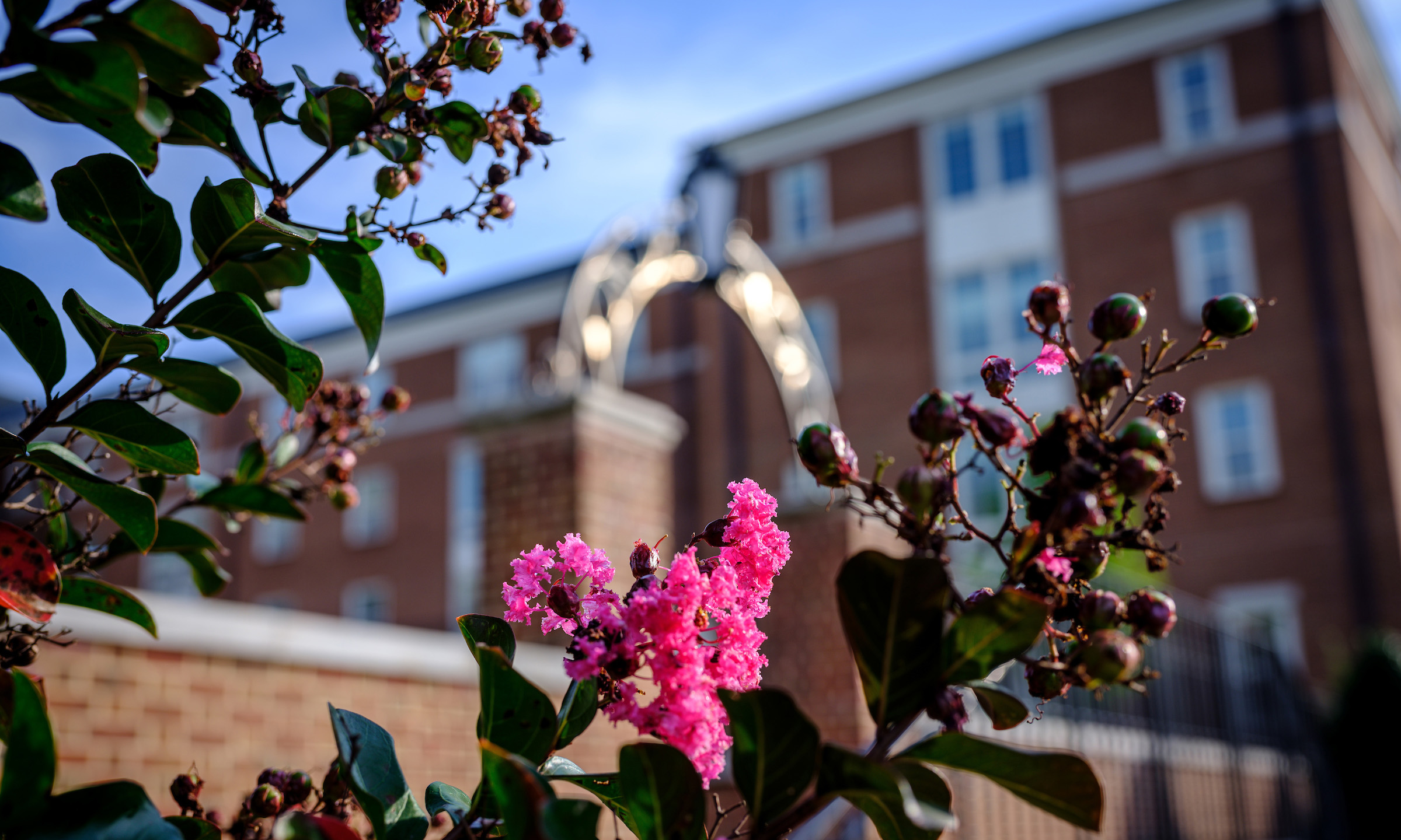 Flowers bloom outside Magnolia Residence Hall